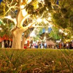 Event and festival Electricians hung up tree lights for the Garden of Unearthly Delights.